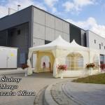 Namiot dla firm